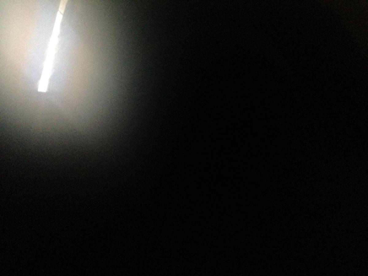 The Light ofLife